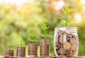 geld wächst wie pflanzen