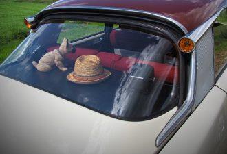 Auto Kofferraumabdeckung