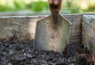 Lochspaten zum Graben