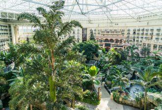 Palmengarten mit Palmenheizung