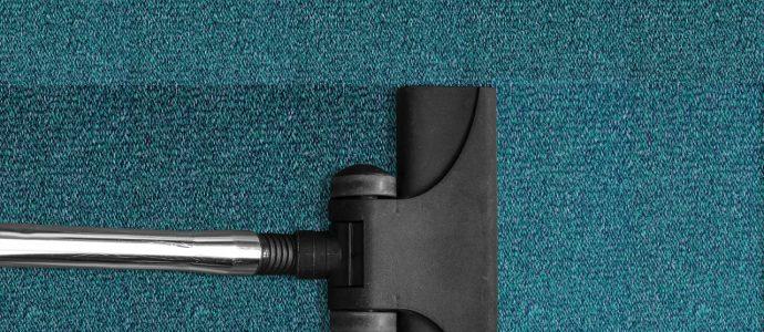 teppichroller-als-staubsauger-alternative