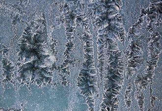 Frostschutzfolie