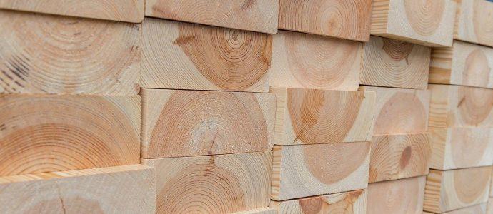 Holzhäuser von Weberhaus