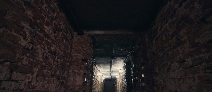 Kellerwand Verkleidung Anleitung Keller